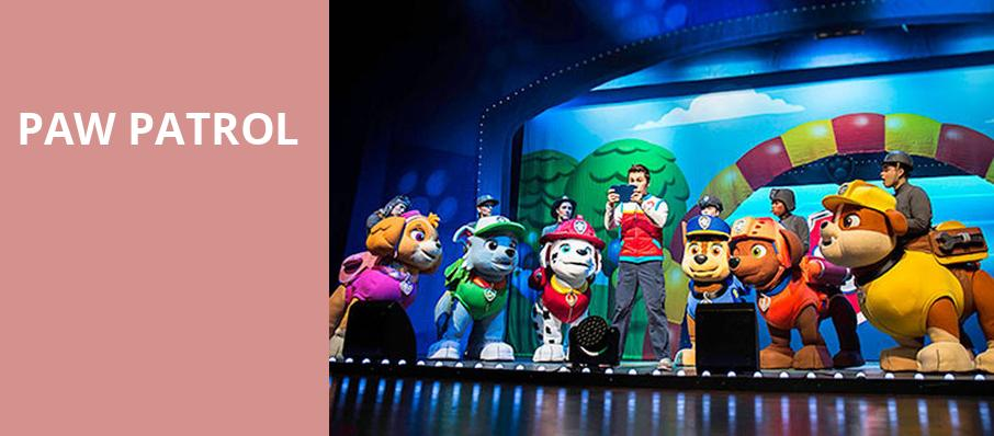 Paw Patrol, Bon Secours Wellness Arena, Greenville